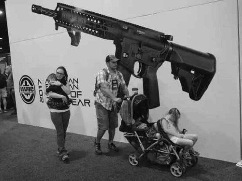 High Magazine Assault Rifles and Gun Background Checks